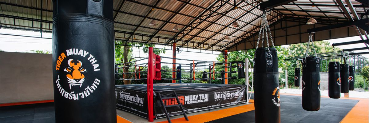 Traing Muaythai in Chiang Mai Thailand